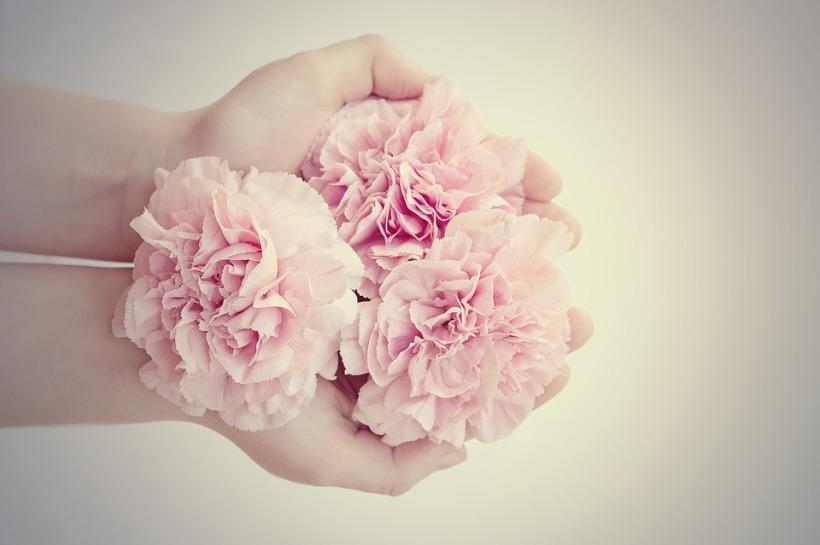 flowers-1359281_960_720