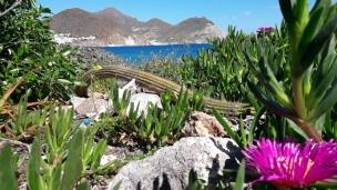 Cabo La Isleta